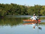 Kayaking at Ft.. Desoto Park