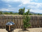 East facing back yard with fire pit, gas grill (not shown), pasture, mountain views