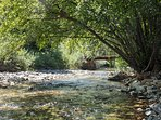East Elk Creek in backyard