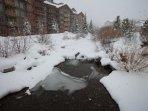 Snow falling on Ten Mile Creek