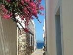 un vicolo verso il mare: sullo sfondo l'isola di S. Pietro
