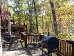 Enjoy the peaceful Ozark woods
