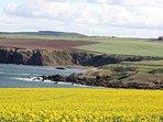 Coldingham Bays