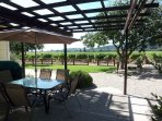 Big Oak  - Lovely Healdsburg Vineyard Home -