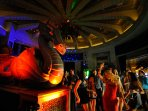 Dragons, night life and bar by the Casino