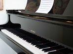 The Petrof IV Grand Piano!
