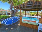 Rent paddle boards, snorkel gear and more right out front of your unit