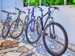 Owners bikes for use FREE