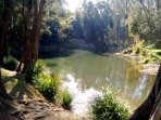 nearby fresh water swimming hole and picnic park ... 2km walk away