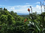 View on the Gulfo Dulce