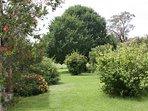 Stunning private garden