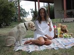 Enjoy a picnic in your own private garden.  Pet friendly