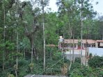 Home stay outer View, with coffee land and plants are surrounded our homestay,