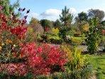jardin botanique de 15 000  m²