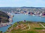 The Harbour of St. John's
