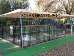 Bright's best Solar Heated Pool