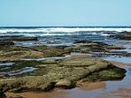 A delightful place to potter at low tide.  Rock pools are rich in minute sea creatures
