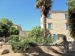 The villa is located right in the center. Its garden grows the tallest palm tree in Krnica.