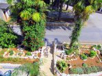 The oldest palm trees in Krnica grow in the garden of Ville Lido.