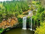 Dangar Falls Dorrigo