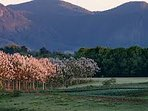 Bellingen Valley and mountains