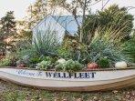 Welcome to Wellfleet