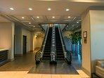Main Escalator
