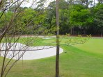 Watch the golfers hit the green and sink the putts on hole 5th green.