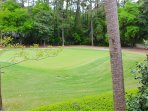 You will enjoy watching the golfers on this challenging hole.