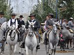 Horse-mackerel at the festivals of Fuengirola