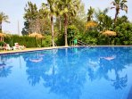 large, very clean and well maintained pool