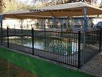 Bright's best solar heated pool