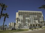 Solare Tower is located at 6300 Padre Blvd. 3 miles north from the bridge.  It seats on 15 acres of plush beachfront