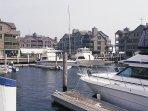 Wyndham Inn on the Harbor Surrounding Area
