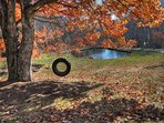 Tire Swing over looking pond