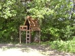 Tree house for little adventurers