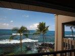 Oceanfront Views