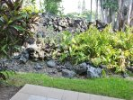 Tropical Garden Views off Lanai