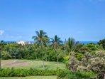 Lanai Views