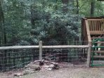 Fenced In Area for Dogs