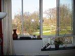 Parkview from livingroom