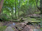 Deep Woods Sitting Area