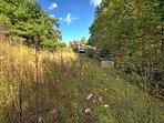 Wildflower Mountain Cottage