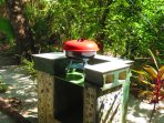 BBQ for you to use in the Lush Garden!