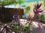 Read a Book in the Tropical Garden