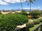 Views from the Lanai