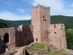 Château de Wangenbourg / 15 km