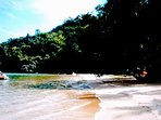 Praia mergulhada no verde. Paraíso.