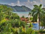 Palm Tree,Tree,Balcony,Hotel,Resort