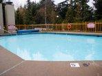Enjoy a Swim All Year Long